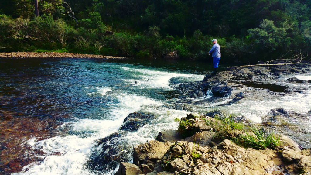 4 - Cachoeira do rio pelotas - viajando em 3.. 2... 1...