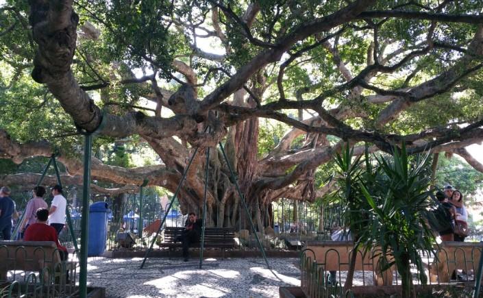 9 - Viajando em 3.. 2... 1.. - praça XV de novembro florianópolis - ponto turístico - patrimônio histórico - mercado público
