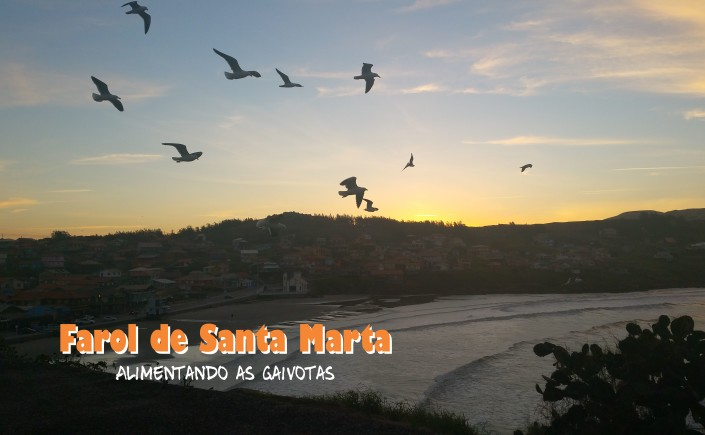 9 viajando-em-321-do-finde-farol-de-santa-marta-dando-comida-para-as-gaivotas- capa