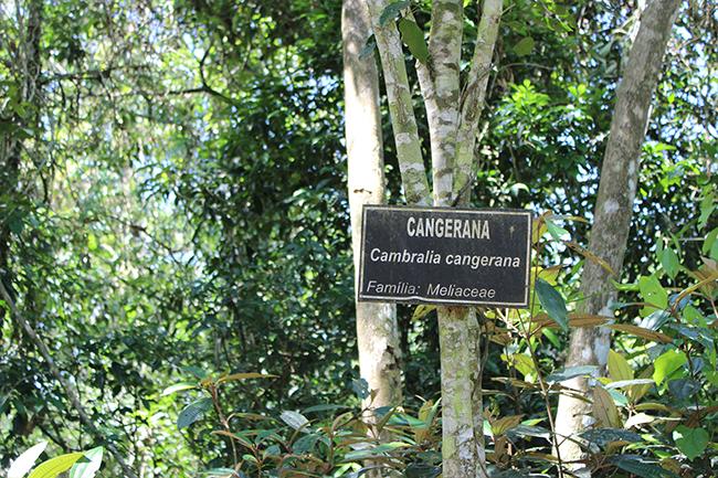 2-Viajando-em-3-2-1-Parque-ecologico-de-maracajá-santa-catarina-informações