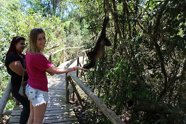23-Viajando-em-3-2-1-Parque-ecologico-de-maracajá-santa-catarina-informações