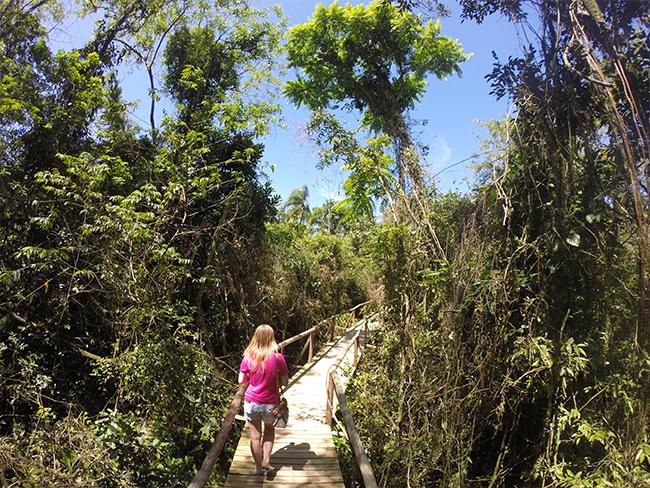 27-Viajando-em-3-2-1-Parque-ecologico-de-maracajá-santa-catarina-informações