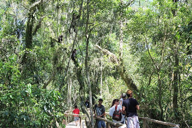 3-Viajando-em-3-2-1-Parque-ecologico-de-maracajá-santa-catarina-informações