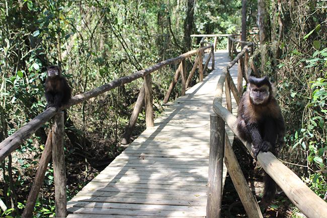 5-Viajando-em-3-2-1-Parque-ecologico-de-maracajá-santa-catarina-informações