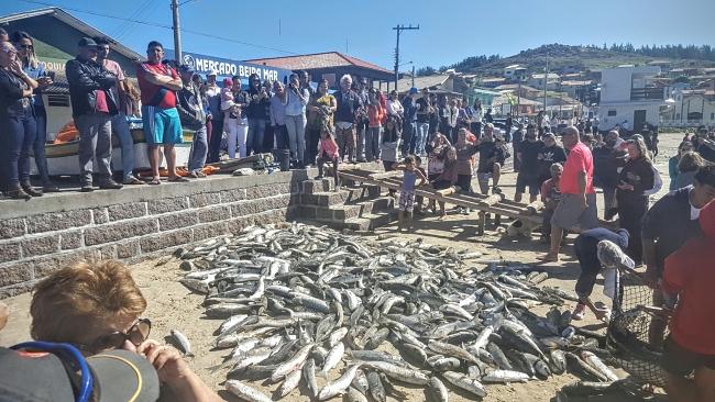 11-blog-viajando-em-321-pesca-da-tainha-arrastão-farol-de-santa-marta-laguna-2016-mateus-andrade-fotos_opt