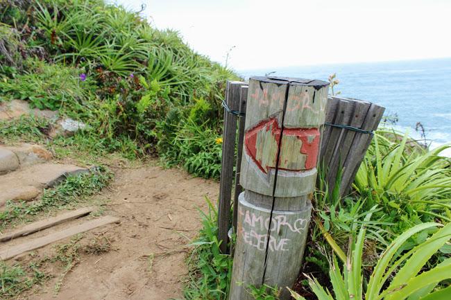 10-blog-viajando-em-321-como-fazer-a-trilha-da-praia-vermelha-praia-do-rosa-santa-catarina