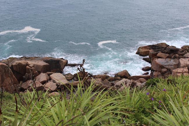 12-blog-viajando-em-321-como-fazer-a-trilha-da-praia-vermelha-praia-do-rosa-santa-catarina