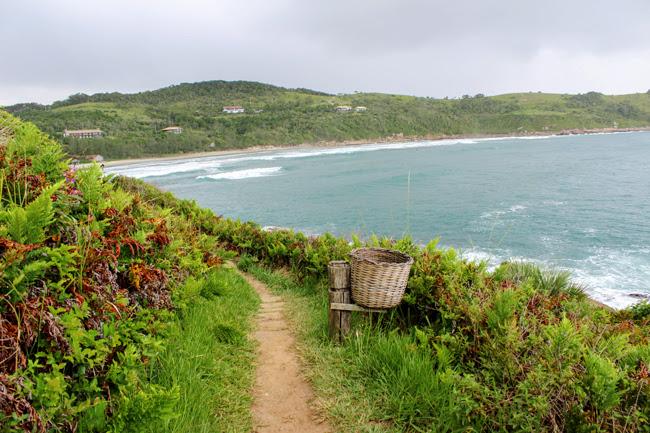19-blog-viajando-em-321-como-fazer-a-trilha-da-praia-vermelha-praia-do-rosa-santa-catarina