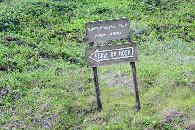 24-blog-viajando-em-321-como-fazer-a-trilha-da-praia-vermelha-praia-do-rosa-santa-catarina