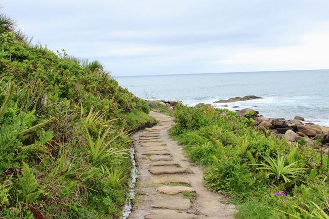 8-blog-viajando-em-321-como-fazer-a-trilha-da-praia-vermelha-praia-do-rosa-santa-catarina
