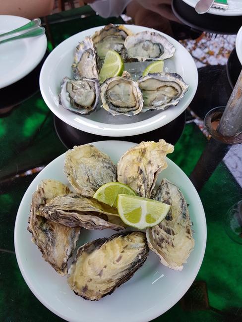 1-viajando-em-321-experiencias-gastronomicas-florianopolis-o-que-comer-sequencia-de-ostras-santo-antonio-de-lisboa